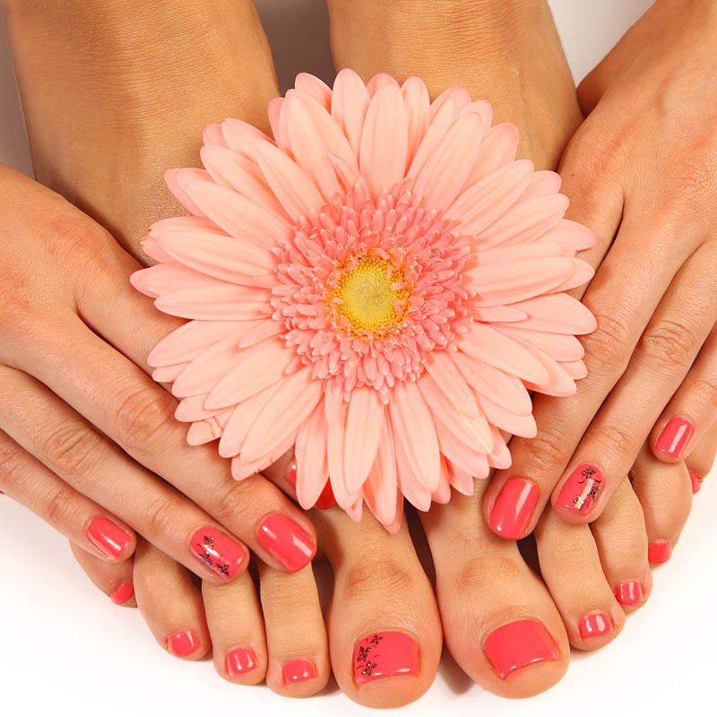 Trattamento alla paraffina mani piedi agua de vida for Bocca mani piedi si puo fare il bagno